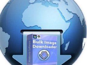 Bulk Image Downloader 5.33 Crack