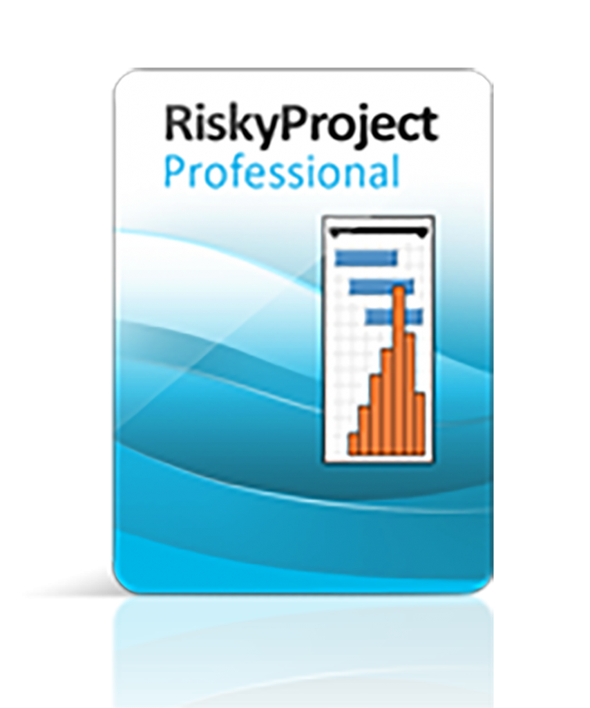 RiskyProject Professional