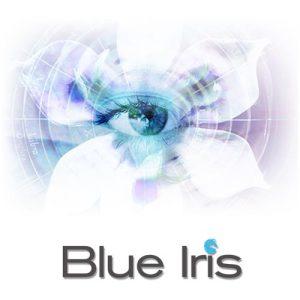 Blue Iris Free Download